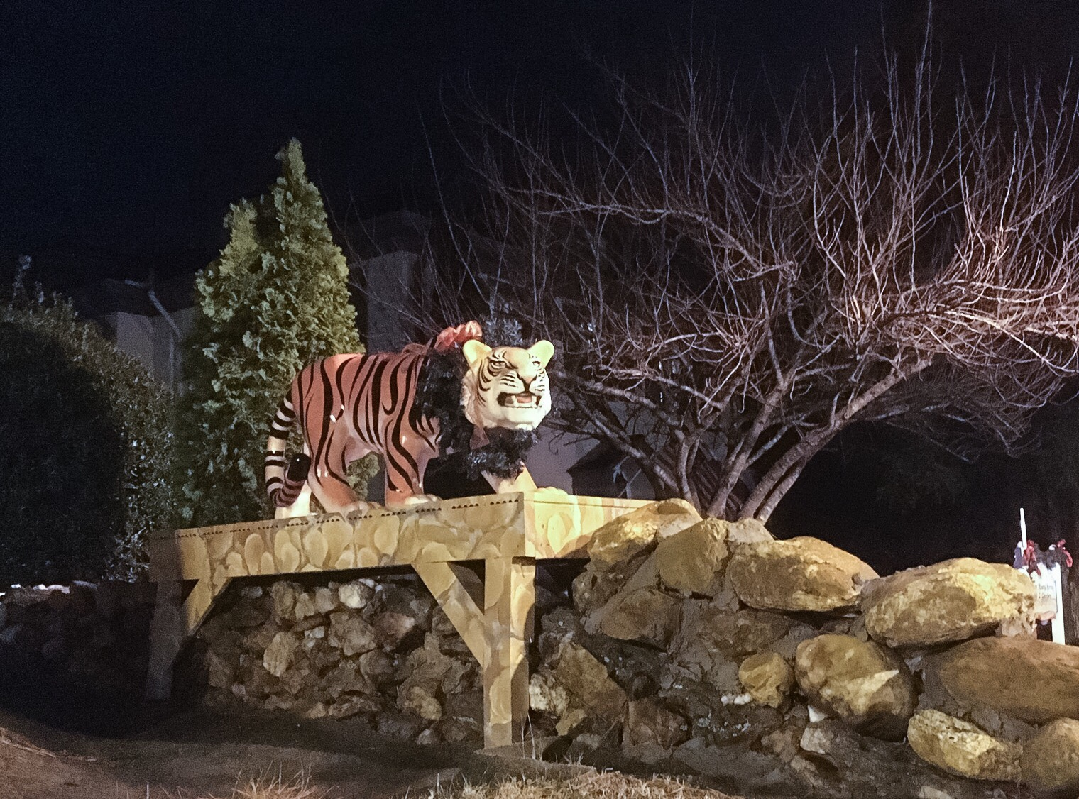 Photo of tiger sculpture from our trip last year.